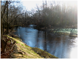 hopewell-mills-dam-site-after-removal