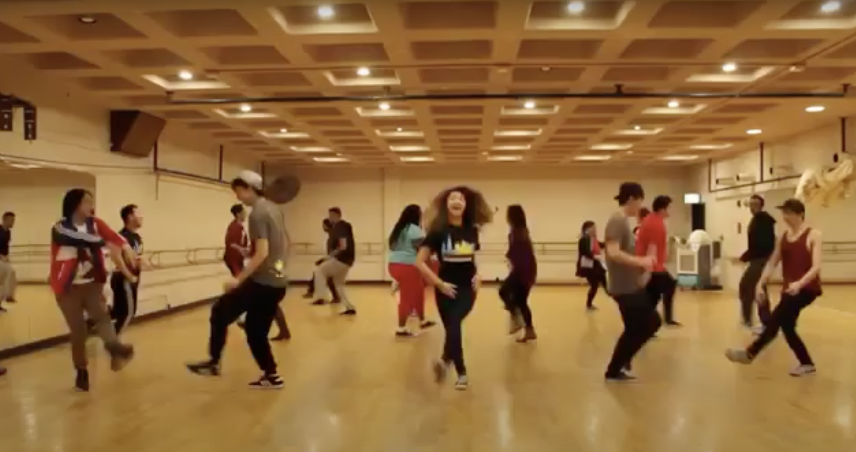 A group of dancers of many races dances in a dance studio