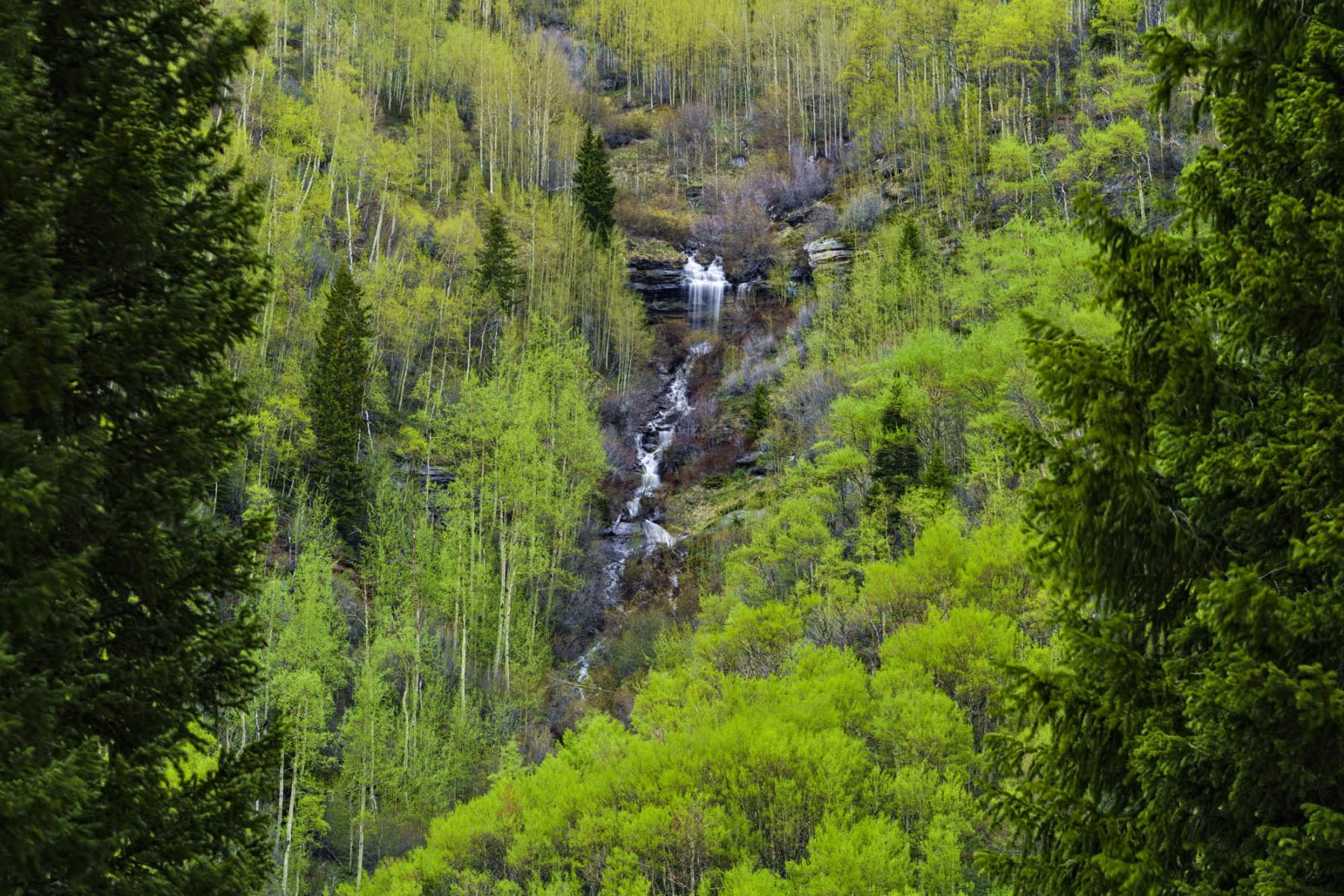 Mountain Waterfall in Spring Cascading Creek