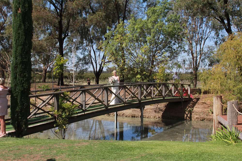 perricoota vines bridge