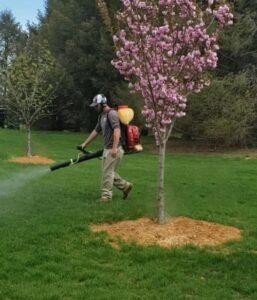bucketless spray
