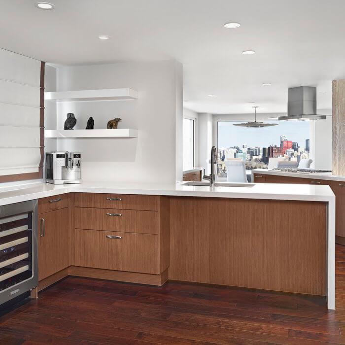 Private Residence Project Kitchen Luxury Condo Interior Design