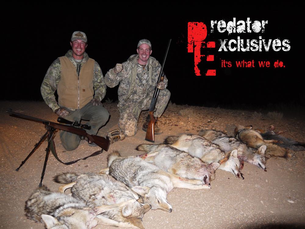 Arizona Predator Hunt
