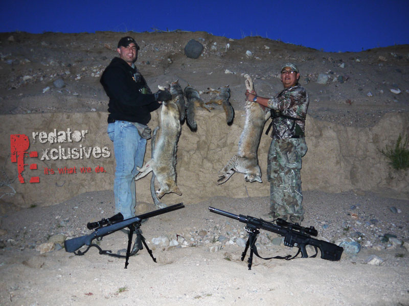Predator Hunting isn't an exact science, but it can be more than just luck.