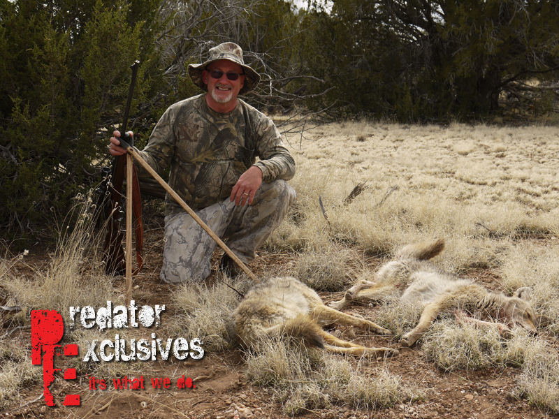 Learning how, what and why successful coyote hunters do things.