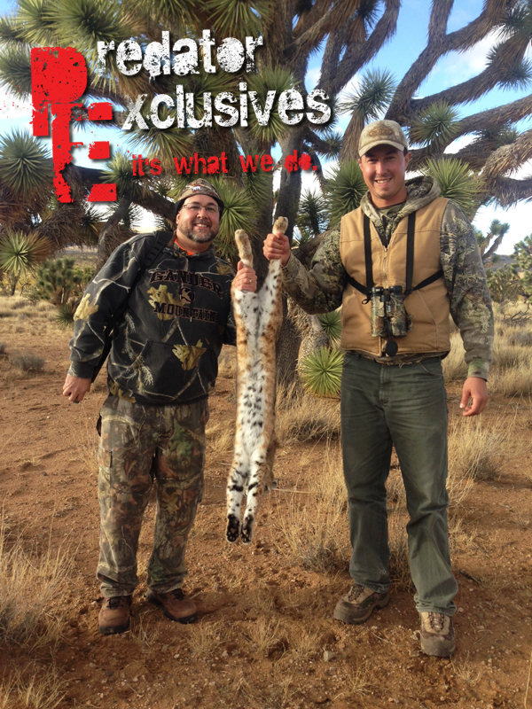 Brian and Predator Exclusives' guide, Chris Chavez, with Brian's bobcat.