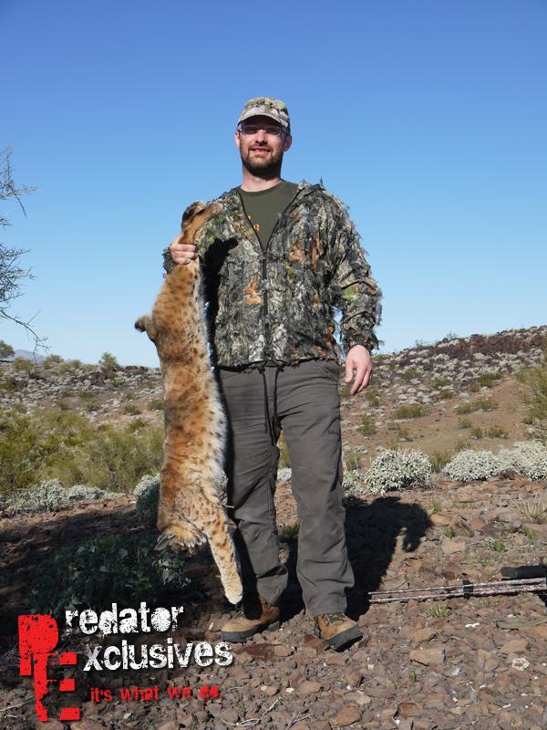 Percy with his Arizona Bobcat!