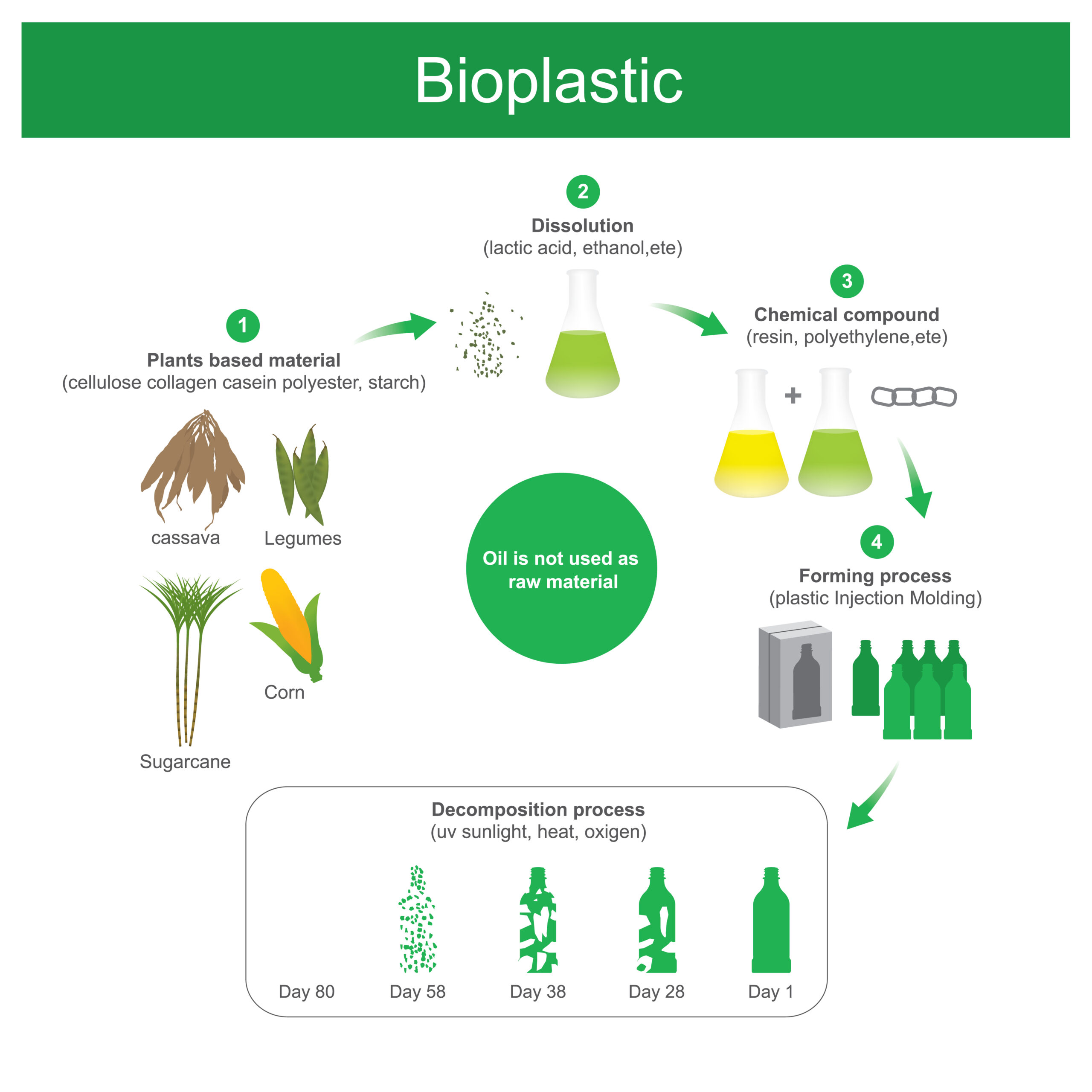 An infographic showing the process of making plant material into bioplastic.