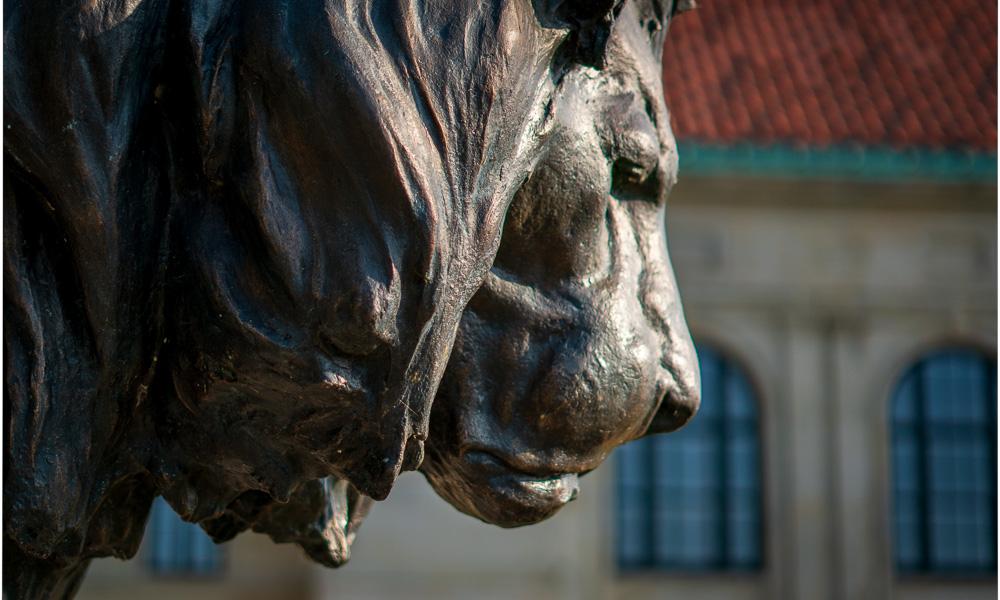 Dayton art institute with lion statue