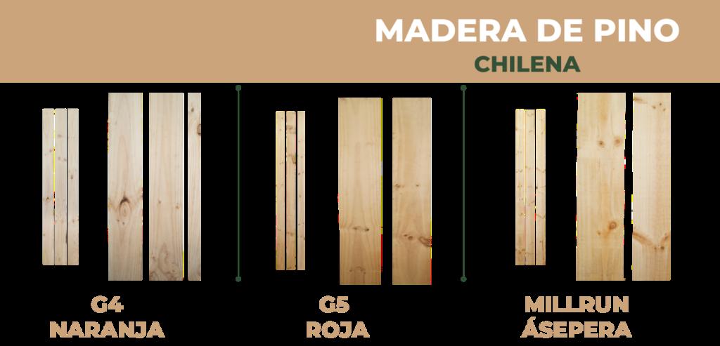 Madera Chilena clases