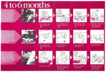 Child development Chart for 4-6 months old