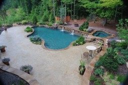 Pool by the forest