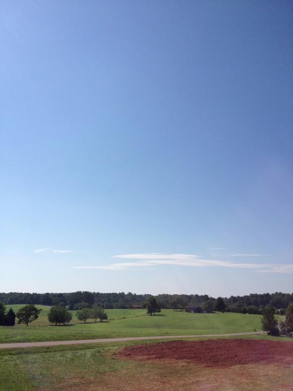 Scenery In Forest VA