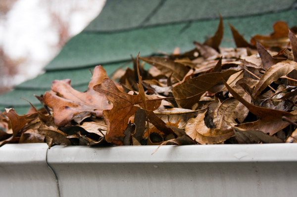 gutters are prepared for colder weather