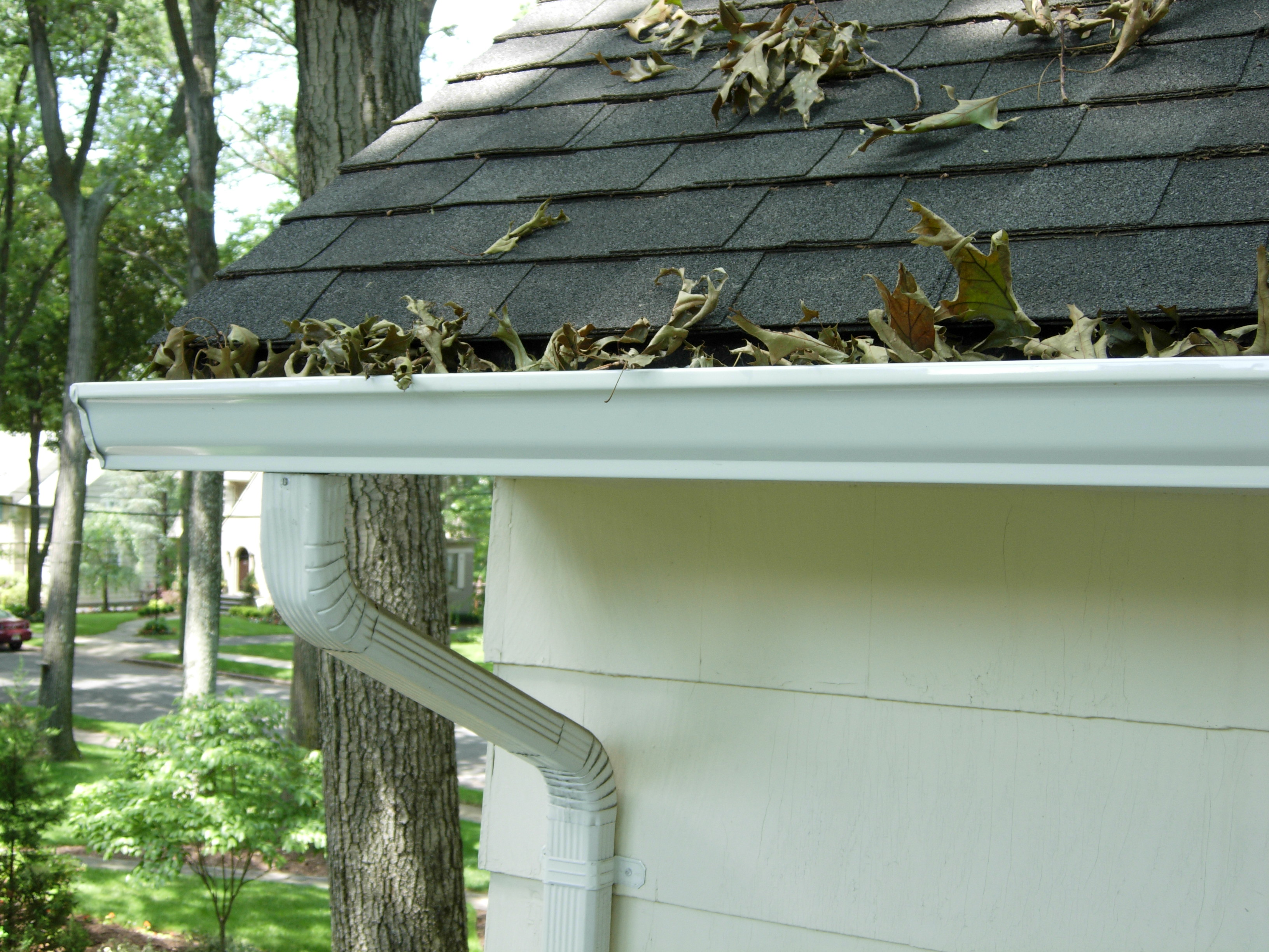 Summer Gutter Maintenance