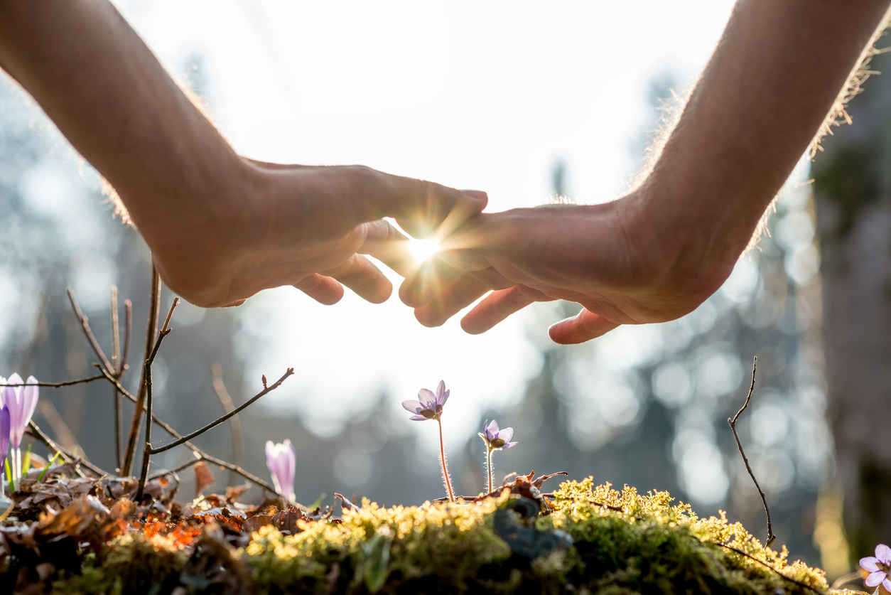 Healing hands covering flowers