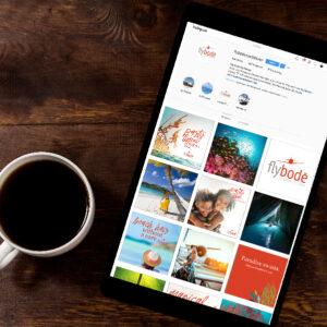 Fly Bode Brand Social Media Blueprint