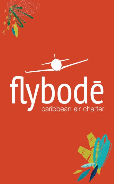 Fly Bode Brand Logo and Brand Elements