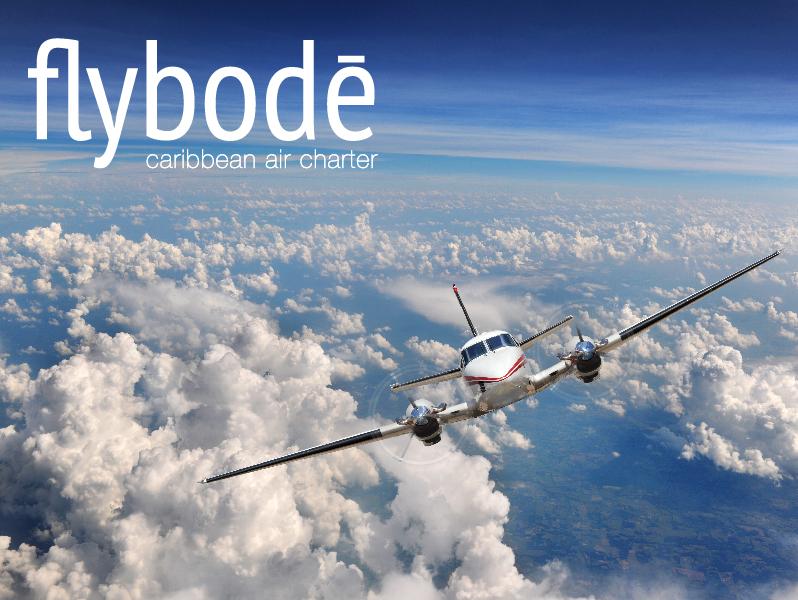 Fly Bode Brand Secondary Logo
