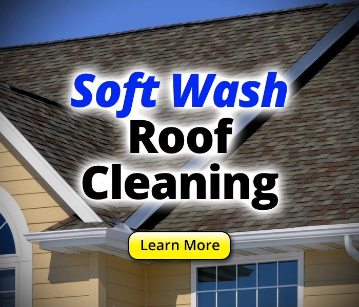 soft-pressure-roof-cleaning-service-montgomery-county-howard-county-anne-arundel-county-baltimore-md
