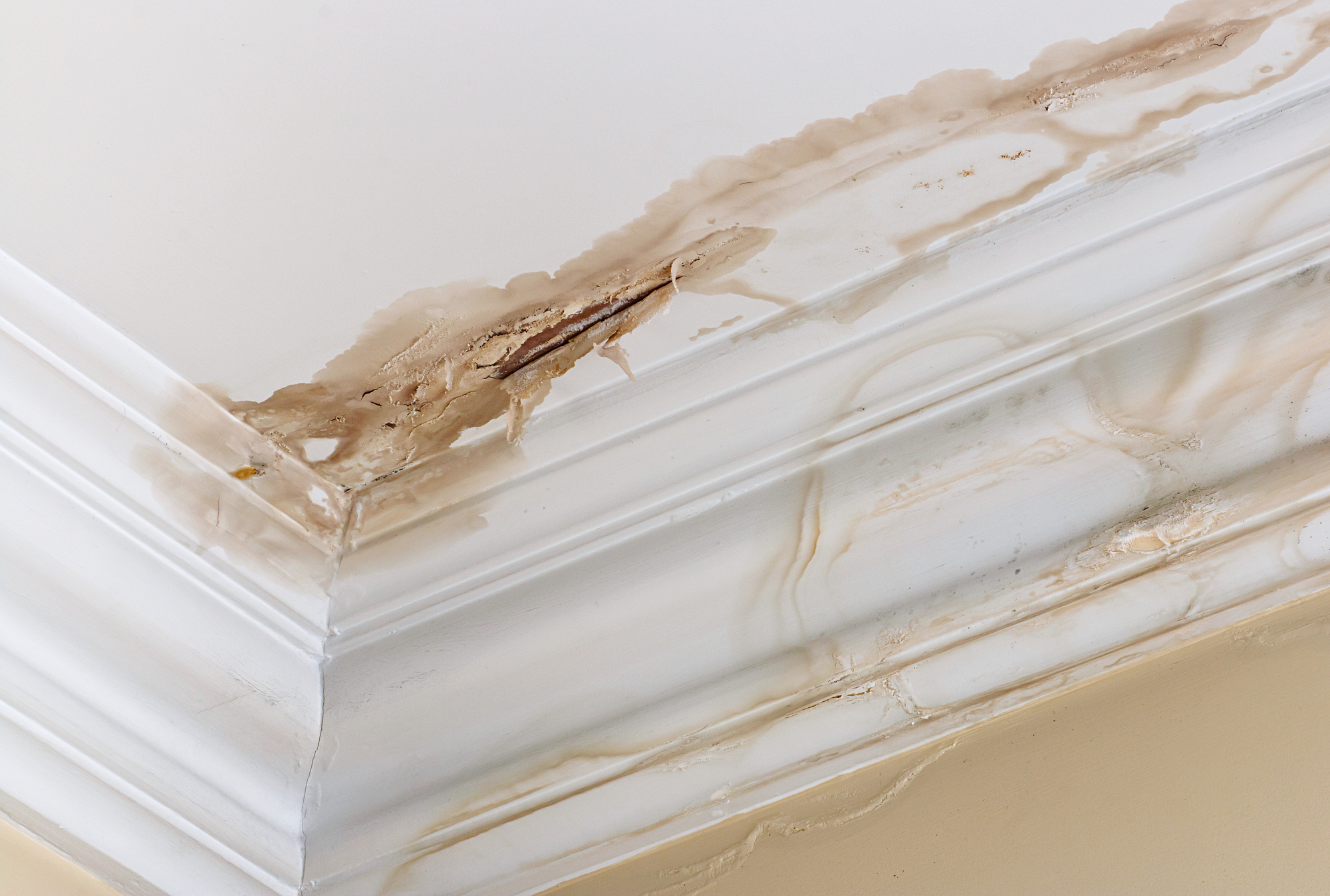 Staining and peeling paint on a ceiling as a result of water damage from a roof leak