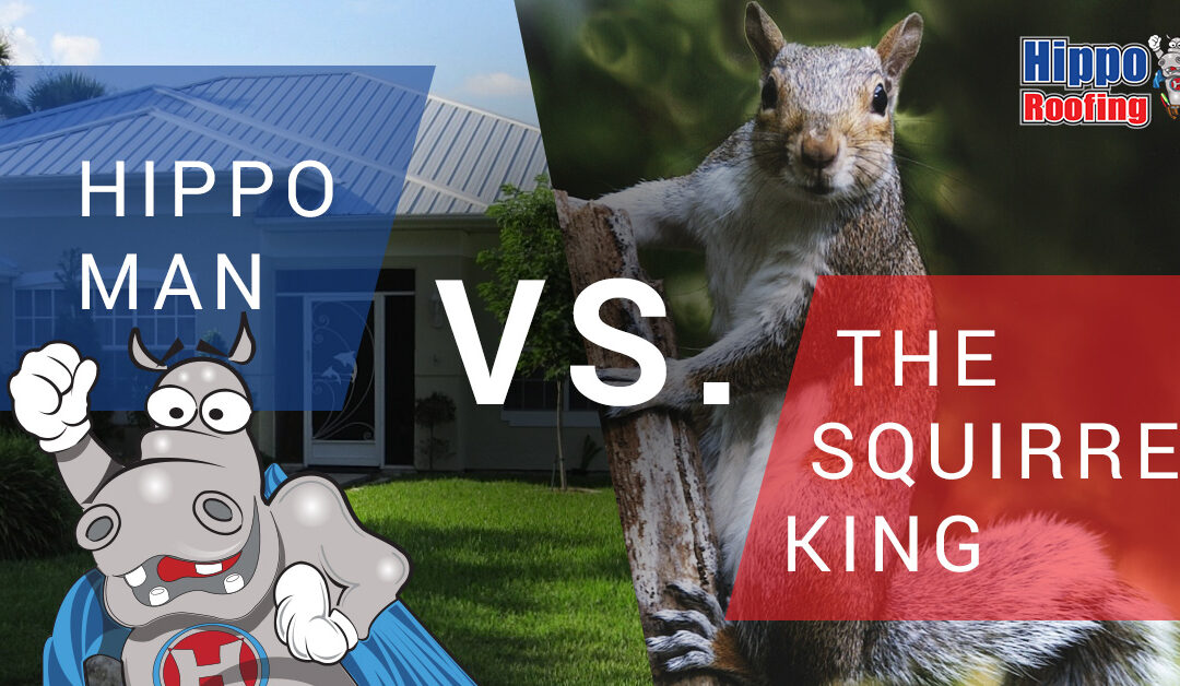 Hippo Man Vs. The Squirrel King