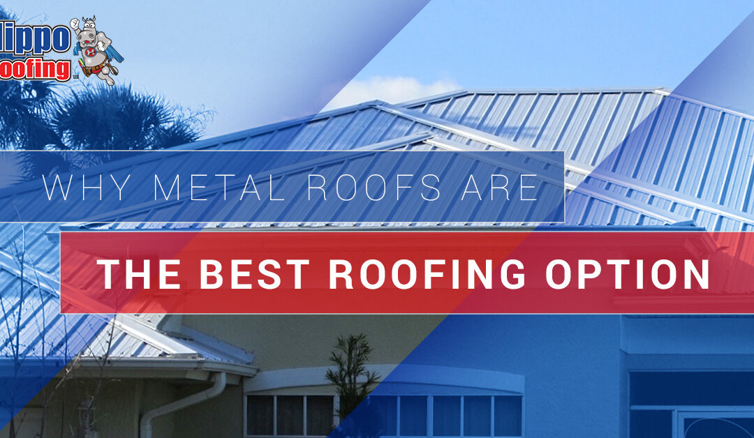 Why Metal Roofs Are The Best Roofing Option