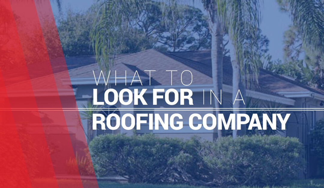 What to Look for in a Roofing Company