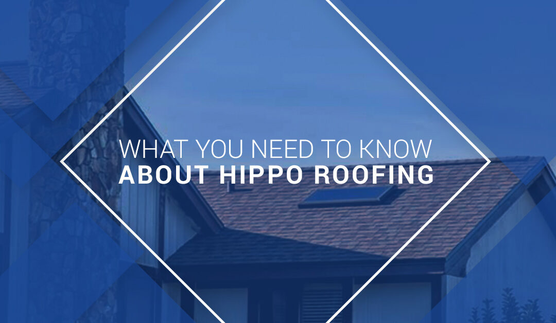 What You Need to Know About Hippo Roofing