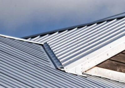Defender Roofs by Hippo Roofing