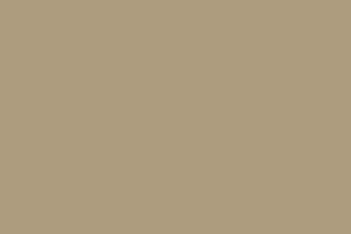 Clay metal roof color swatch