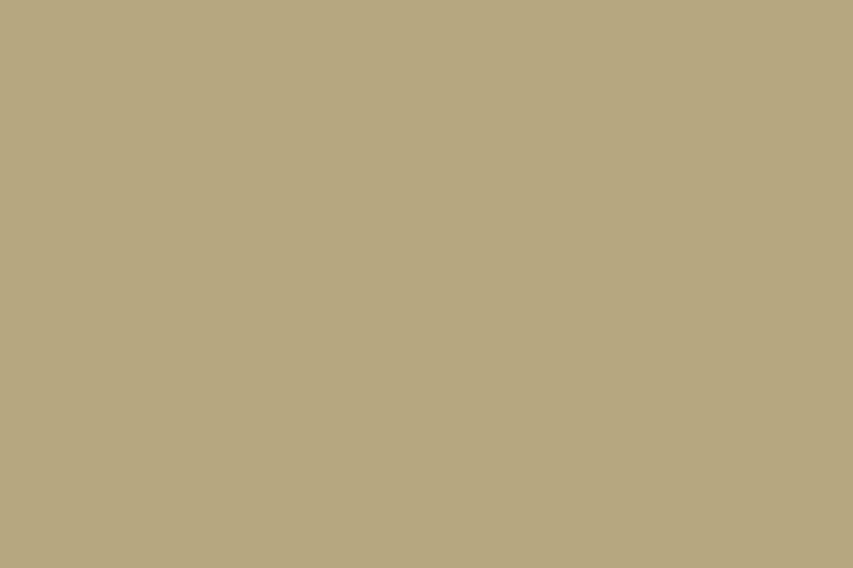 Tan metal roof color swatch