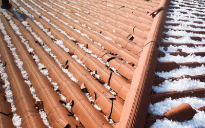 7 Easy Steps to Recover from Hail Damage