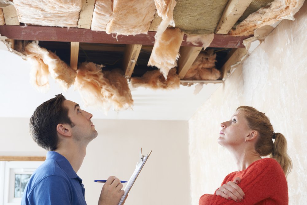 What to Look for During a Roof Inspection
