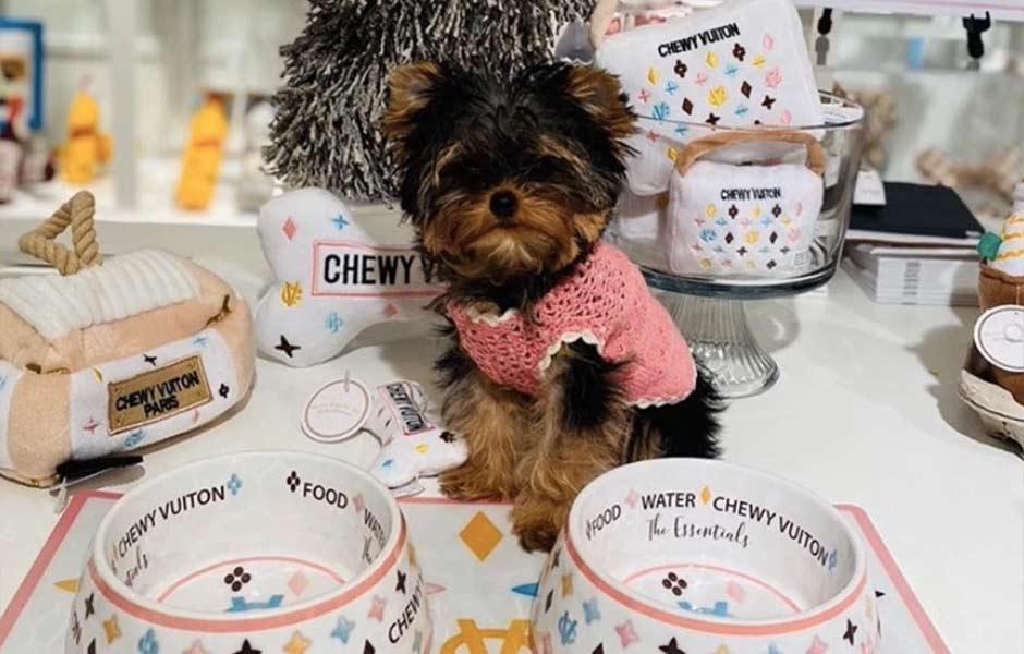 Coco Me Louie Designer Pet Accessories