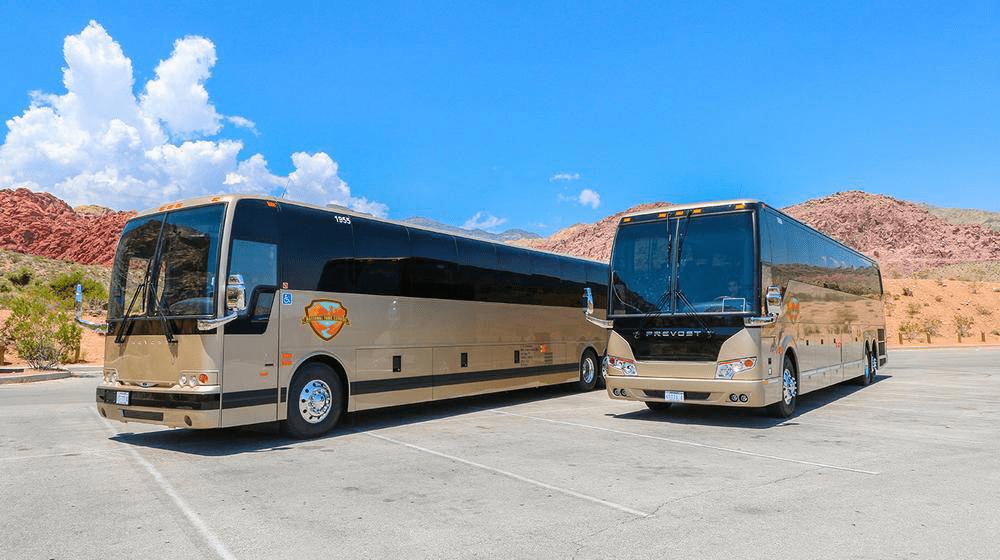 Bus with Logo David Lusvardi 1