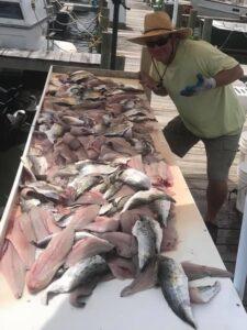mackerel5