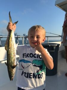 mackerel7