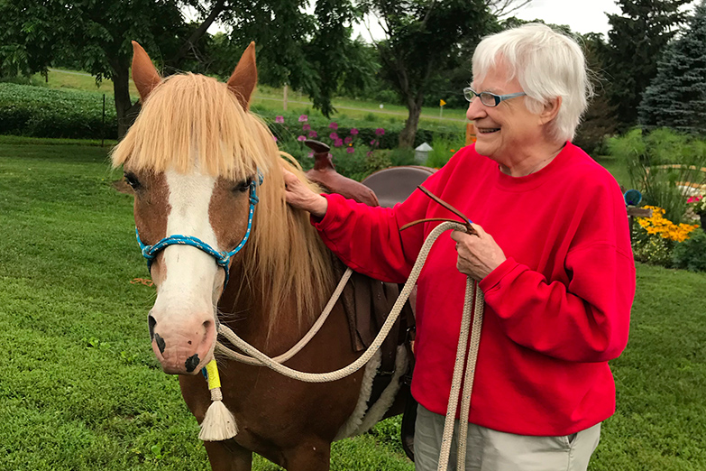 Horse farm2_web