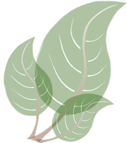 leafgraphic