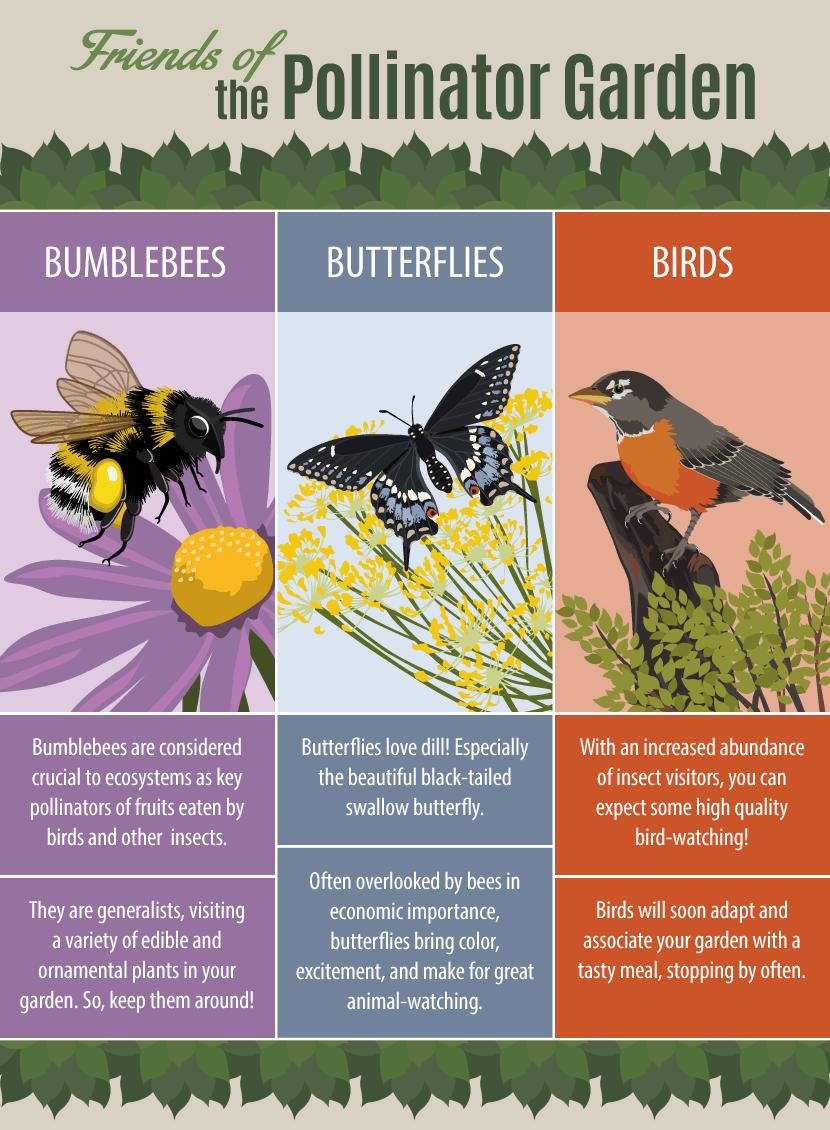 Pollinator Chart