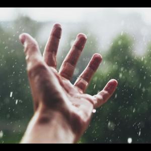 Dovilė Anoškaitė, Peterborough - Summer Rain
