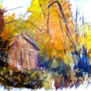 Allotments by Tony O'Dwyer