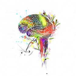 Mind In Bloom