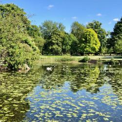 Escape to Abbey Park