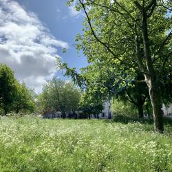 De Montfort Square 11th May 2020