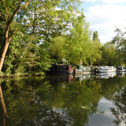 Reflections in the River Stort