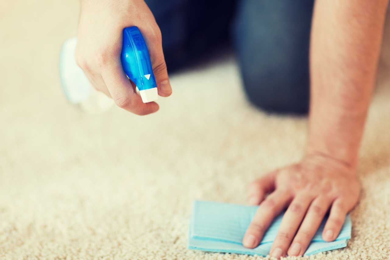 Pet Stains on carpet - Carpet Keepers can help