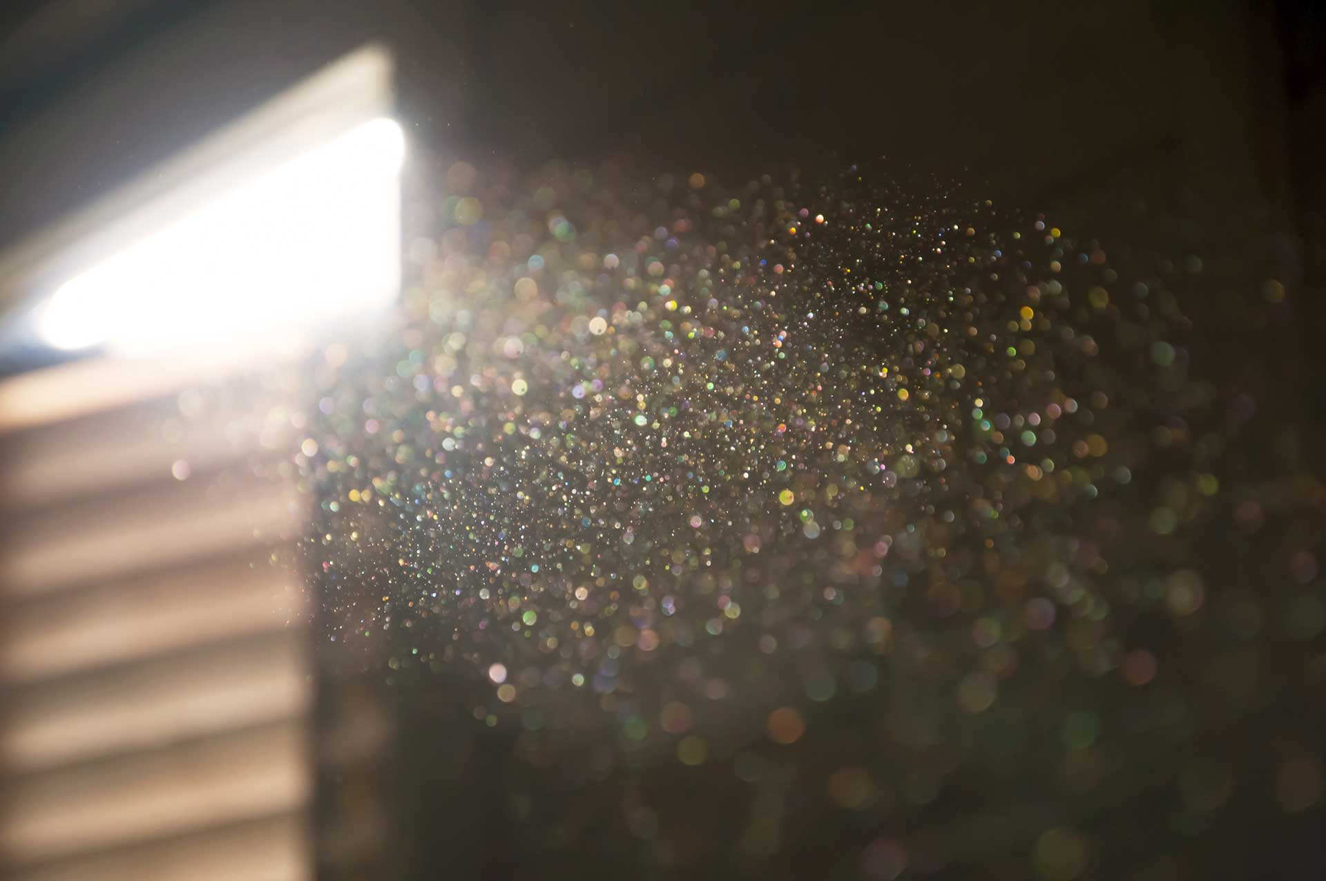 image of pollen in the home air which can damage carpet and upholstery fabric