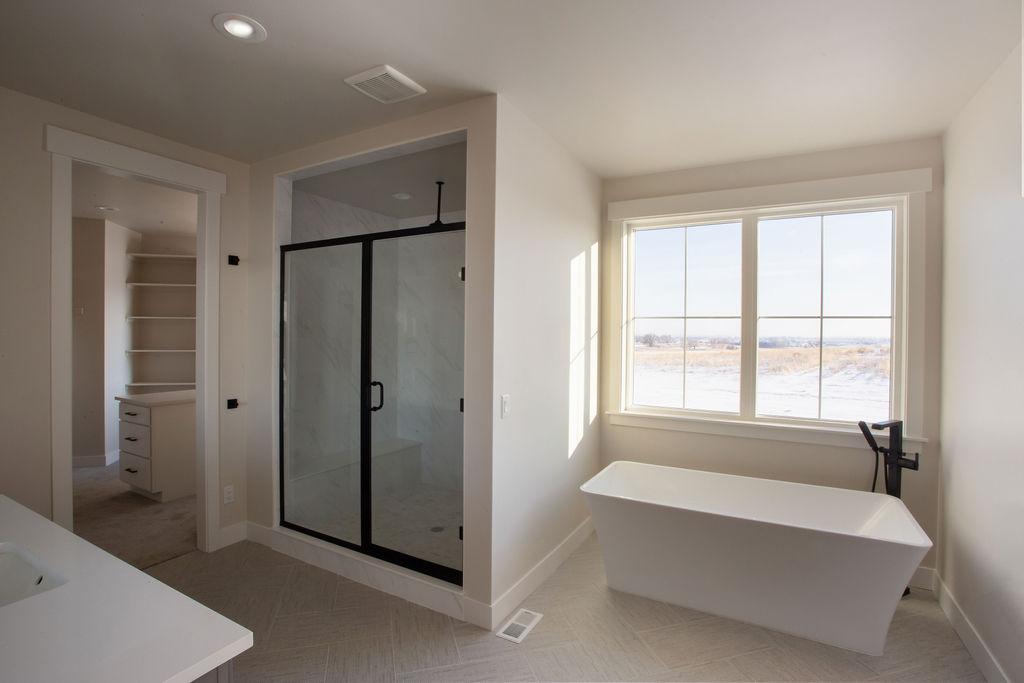 bathtub and bathroom enclosure
